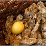oesters in Normandie win een picknick