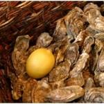 oesters in Normandie win een picknick